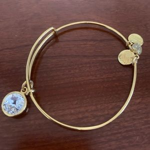 Alex & Ani Crystal Bracelet